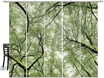 emotion textiles Schiebegardine »Wood«, Klettband (5 Stück), inkl. Beschwerungsstange, grün, Klettband, halbtransparent, moosgrün