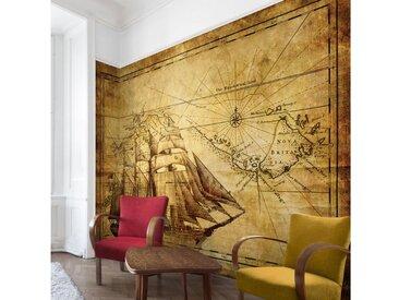 Bilderwelten Vliestapete Breit »Time of Exploration«, natur, 290x432 cm, Naturfarben