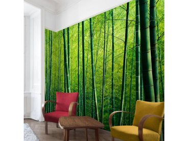 Bilderwelten Vliestapete Premium Breit »Bambuswald«, grün, 290x432 cm, Grün