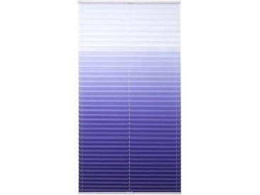 Liedeco Plissee »Farbverlauf«, Lichtschutz, ohne Bohren, verspannt, blau, blau