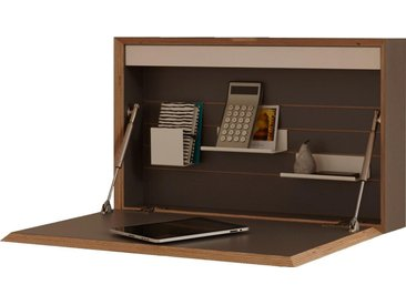 Müller hängender Sekretär »FLATBOX«, grau, Leuchtstoffröhre / Steckdose, anthrazit mit Birkenkante