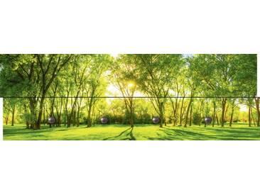 Artland Wandgarderobe »deviantART: Frühlingswärme II«, grün, 30 x 90 x 2,8 cm, Grün