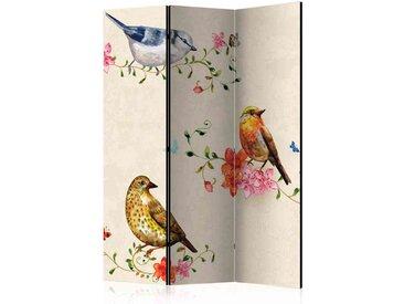 Spanische Wand mit Vogel Motiven 135 cm breit