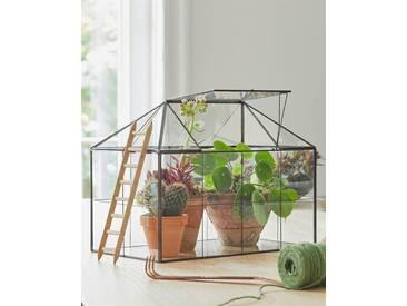 Gewächshaus, Glas, Metall - one size - bunt - Glas und Metall