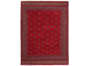 Pakistan Buchara 2Ply Teppich Orientteppich 322x246 cm, Pakistan Handgeknüpft Klassisch