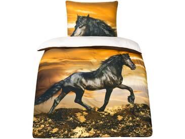 Baumwoll-Satin Pferde Bettwäsche Pferdebettwäsche 135x200 MOON Digitaldruck D496/0902