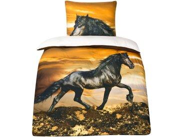635f3feca9a75a Baumwoll-Satin Pferde Bettwäsche Pferdebettwäsche 135x200 MOON Digitaldruck  D496/0902